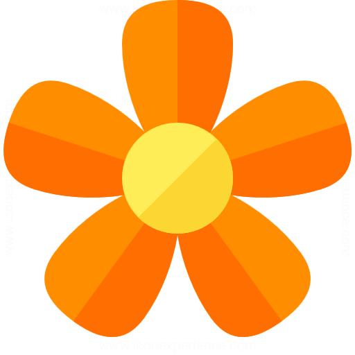 Google Images Flower File Pink Flower 4982863455 Jpg