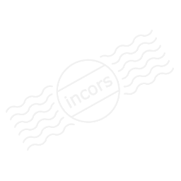 Document Check Icon 256x256