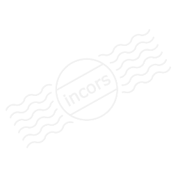 Form Plain Icon 256x256
