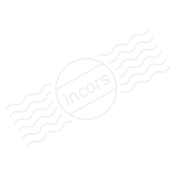 Pineapple Icon 256x256