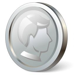 Iconexperience V Collection Coin Silver Icon