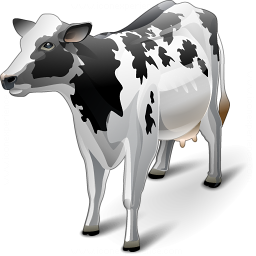 Iconexperience V Collection Cow Icon