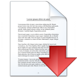 Document Down Icon 256x256