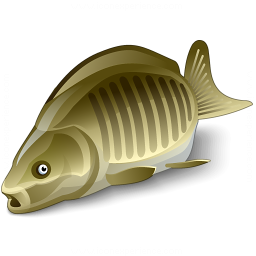 Iconexperience V Collection Fish Icon