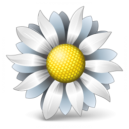 Flower White Icon 256x256
