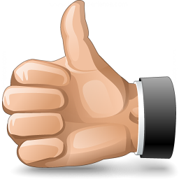 Hand Thumb Up Icon 256x256