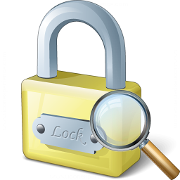 Lock View Icon 256x256
