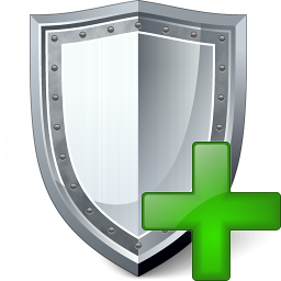 Shield Add Icon 256x256