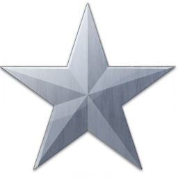 Star Grey Icon 256x256