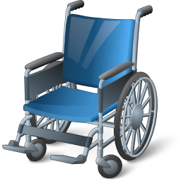 Wheelchair Icon 256x256